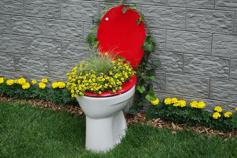 toilet-2304989_960_720